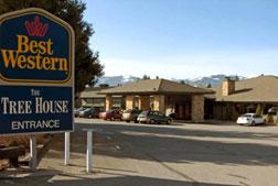 Mount shasta mount shasta travel mount shasta tour for Shasta motors redding california